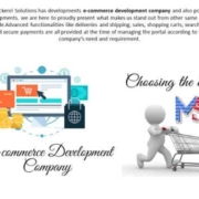 SEO Services and Development Company - Mackerel Solutions