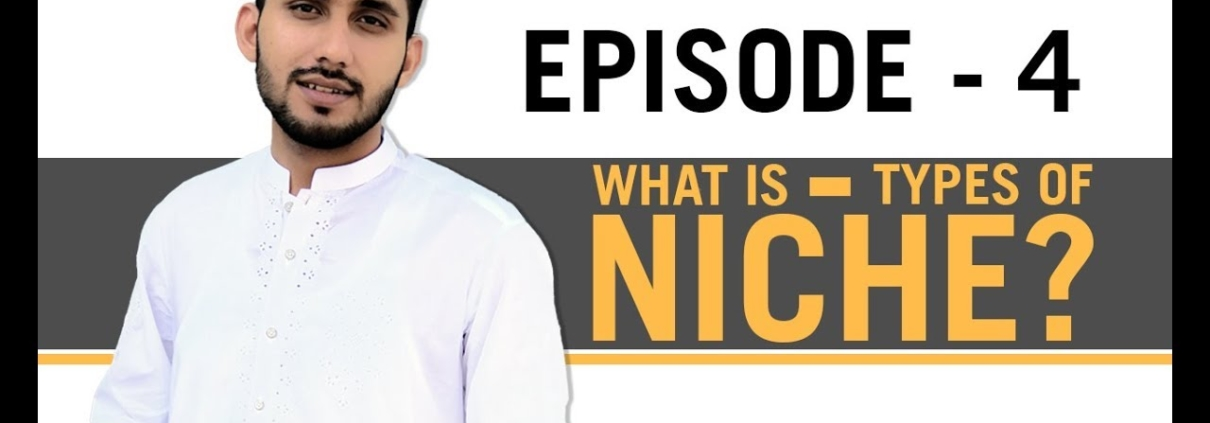 What is Niche and types of niche in Urdu-Hindi | SEO SERIES EPISODE 4