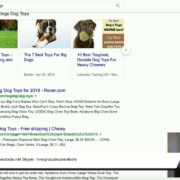 The #1 SEO Tip That Will Bring Instant Results